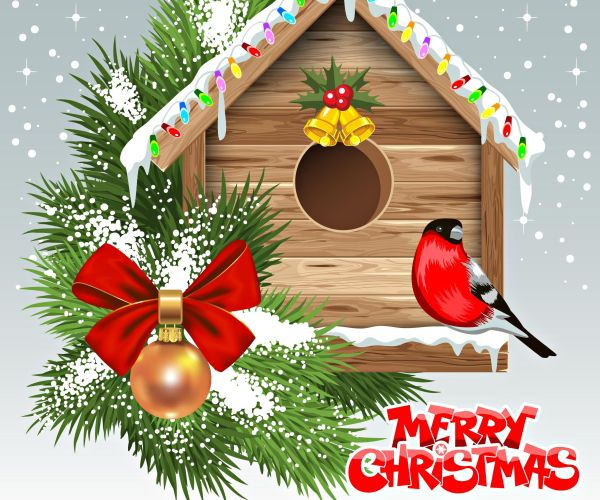 happy christmas and celebrate