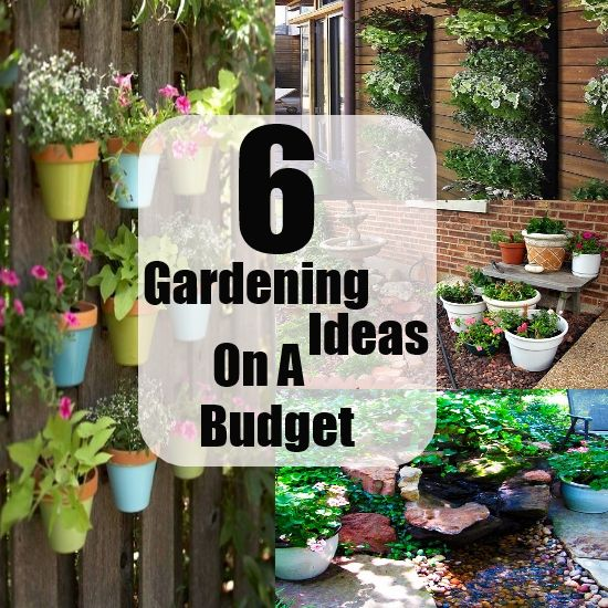 Awesome Gardening Ideas On A Budget Gardening Pinterest