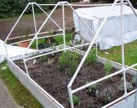 herb garden with pvc pipe supports for a cover | Garden ...