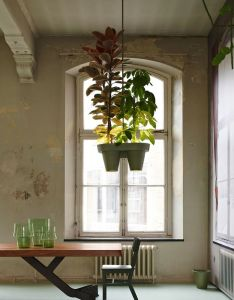 Plants  interior design botanic bucket light dutch designer roderick vos go green with the remarkable plant lamp also pin by natas porter on tables pinterest hanging rh