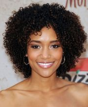 natural curly hairstyles african