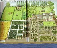 One-acre spread, how many people? | Homestead Layout ...
