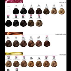 Hair Color Placement Diagram Schult Mobile Home Wiring L 39oréal Professionnel Dia Richesse Chart August