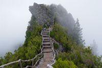 mountain-fog-stairs-steps-nature.jpg (19201280) | foggy ...