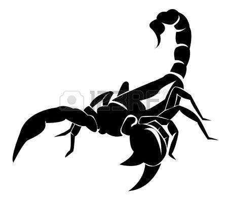Dibujo De Escorpion Affordable Dibujo Para Colorear