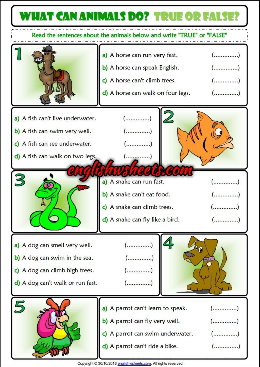 What Can Animals Do True Or False Esl Printable Grammar