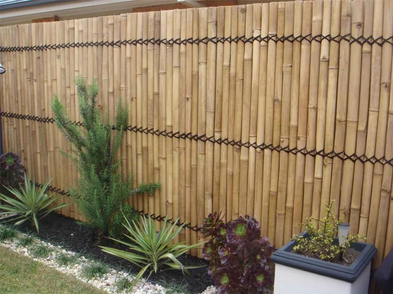 BAMBOO FENCE FENCING BAMBOO SCREEN 2 4M X 1M DOUBLE LACQUER