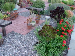 xeriscaping drought