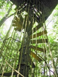 Tree House Spiral Staircase with rope | Boys will be Boys ...