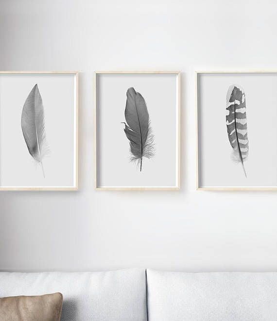 Set of wall art living room feather photography black also rh pinterest