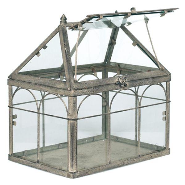 Mini Serre dinterieur  Terrariums and Eco Systems