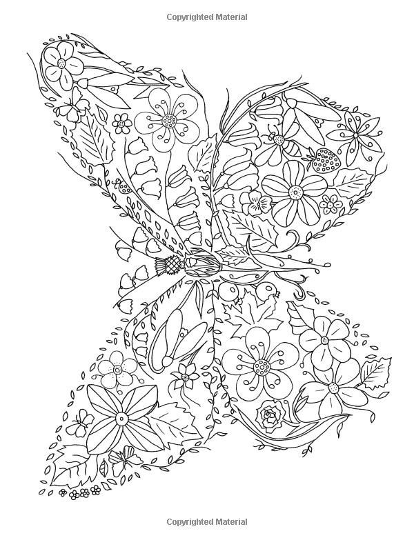 Ausmalbilder Von Kolibri Ausdrucken Malvorlagen Kostenlos