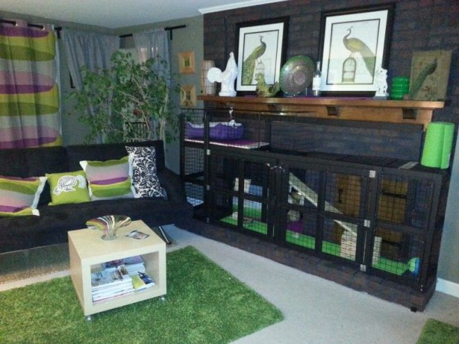 Custom rabbit cage in my ikea living room for my english
