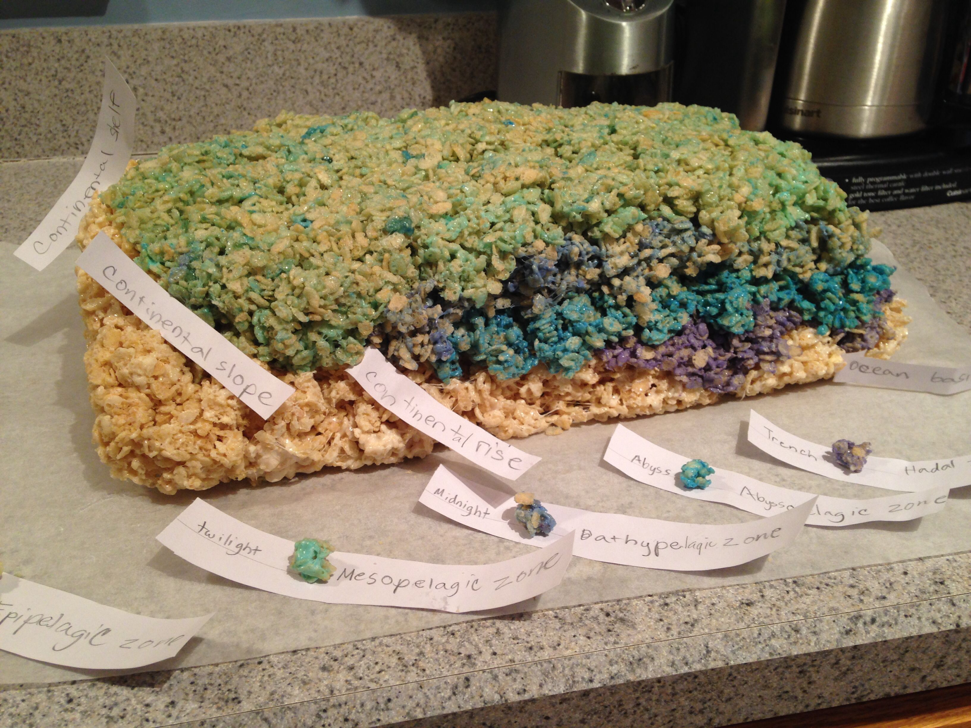 Science Project 6th Grade Ocean Floor And Layers Of The