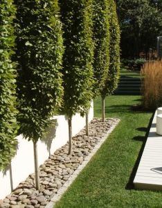 Find this pin and more on house mood board apld international landscape design also the best images about pinterest gardens rh uk