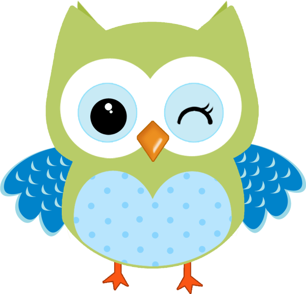 Pin Anyitkagnaggy Owls Owl