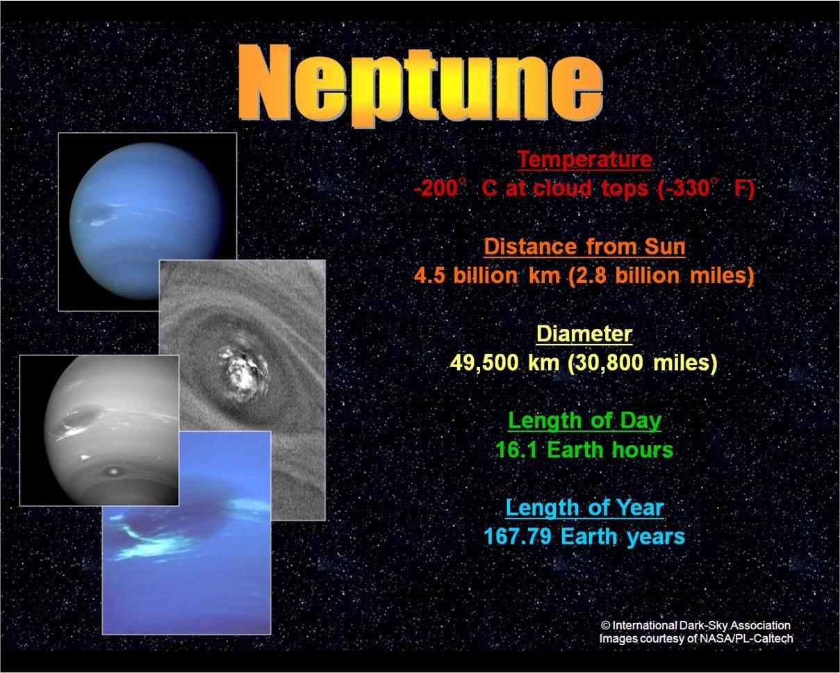 Neptune Kids