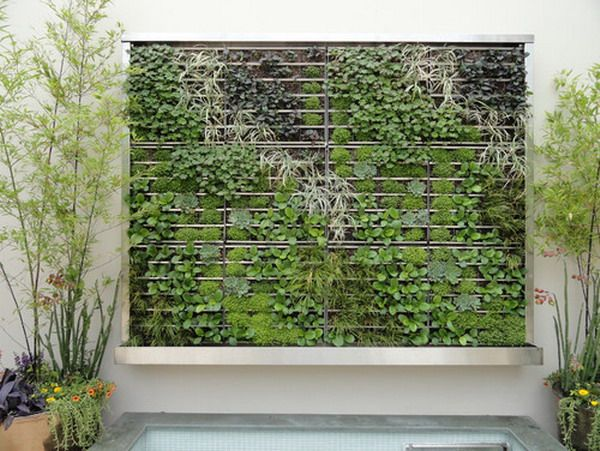 Green Wall Garden Patio With Decorative Plants HOME SPACE