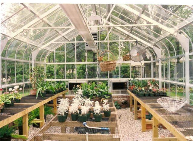 Small Greenhouse Layout Inside