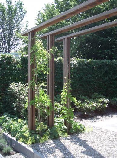 moderne tuinen - strak en modern