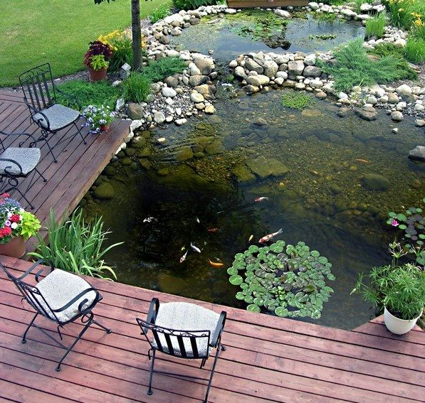 40 Amazing Backyard Pond Design Ideas Water Pond And Pond Design