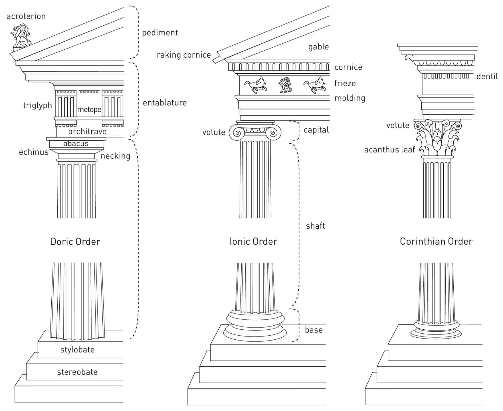 3 18 Diagram Of The Classical Architectural Orders