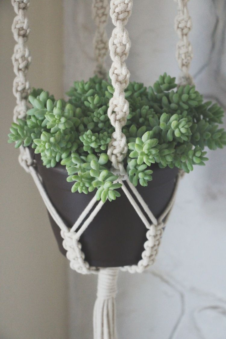 kitchen pot hangers oakley sink backpack review our first giveaway | macrame plant hangers, ...