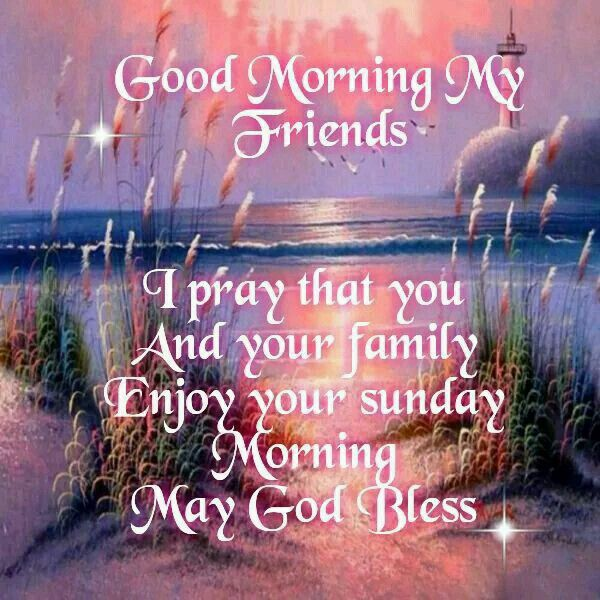 Good Morning My Friends Enjoy Your Sunday Pictures Photos And Images For Facebook Tumblr