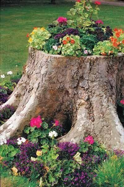 Flower Tree Stump Flowers Garden Gardening Garden Decor Small