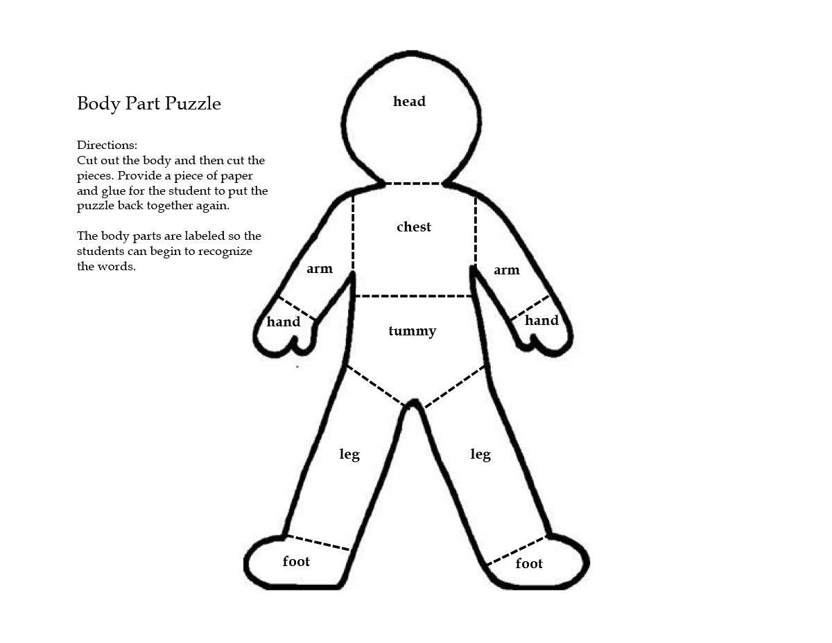 Human Body Worksheet Toddlers