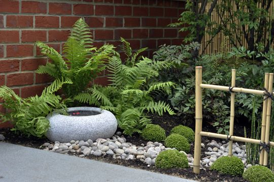 Japanese Style Garden Fern Fanatic Pinterest Gardens Ferns