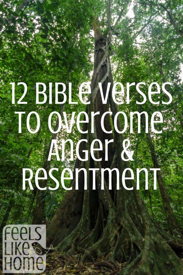 Best 25 Funny Bible Verses Ideas On Pinterest Haha