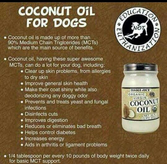 Great for dog allergies and dermatitis | Dogs | Pinterest ...