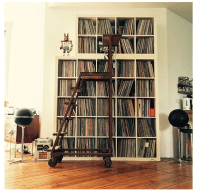 record storage record shelves vinyl collector black gold ...