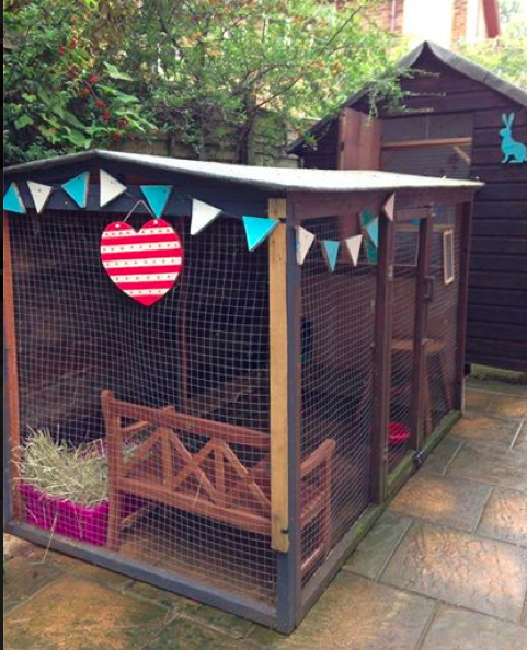All Sorts Of Rabbit Housing Idea For You To View Great Ideas