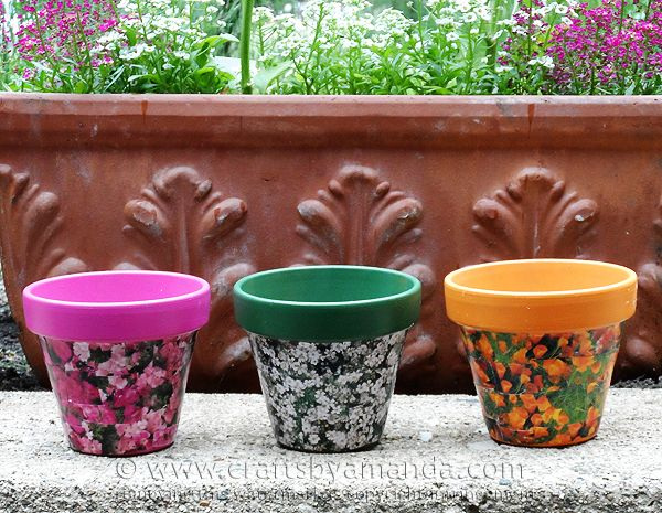 Check Out Seed Packet Decoupage Clay Pots It's So Easy To Make