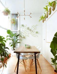 The work space where good ideas grow air plantsair filtering plantsindoor also plants room and green office rh nz pinterest
