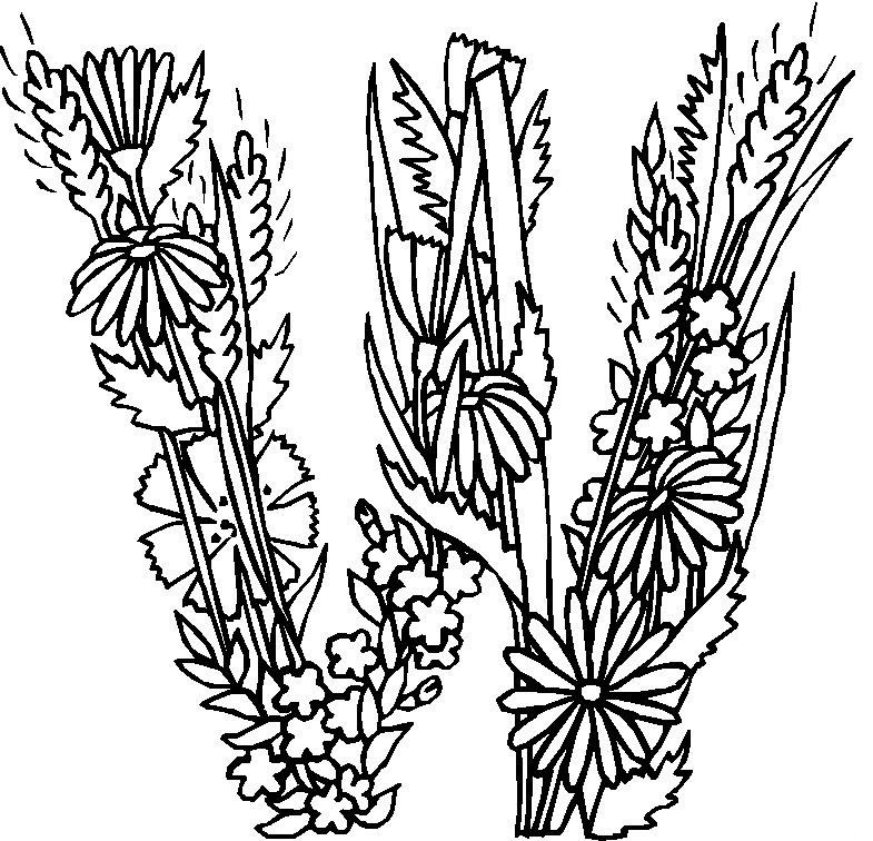 26 Coloring Pages Of Alphabet Flowers On Kids
