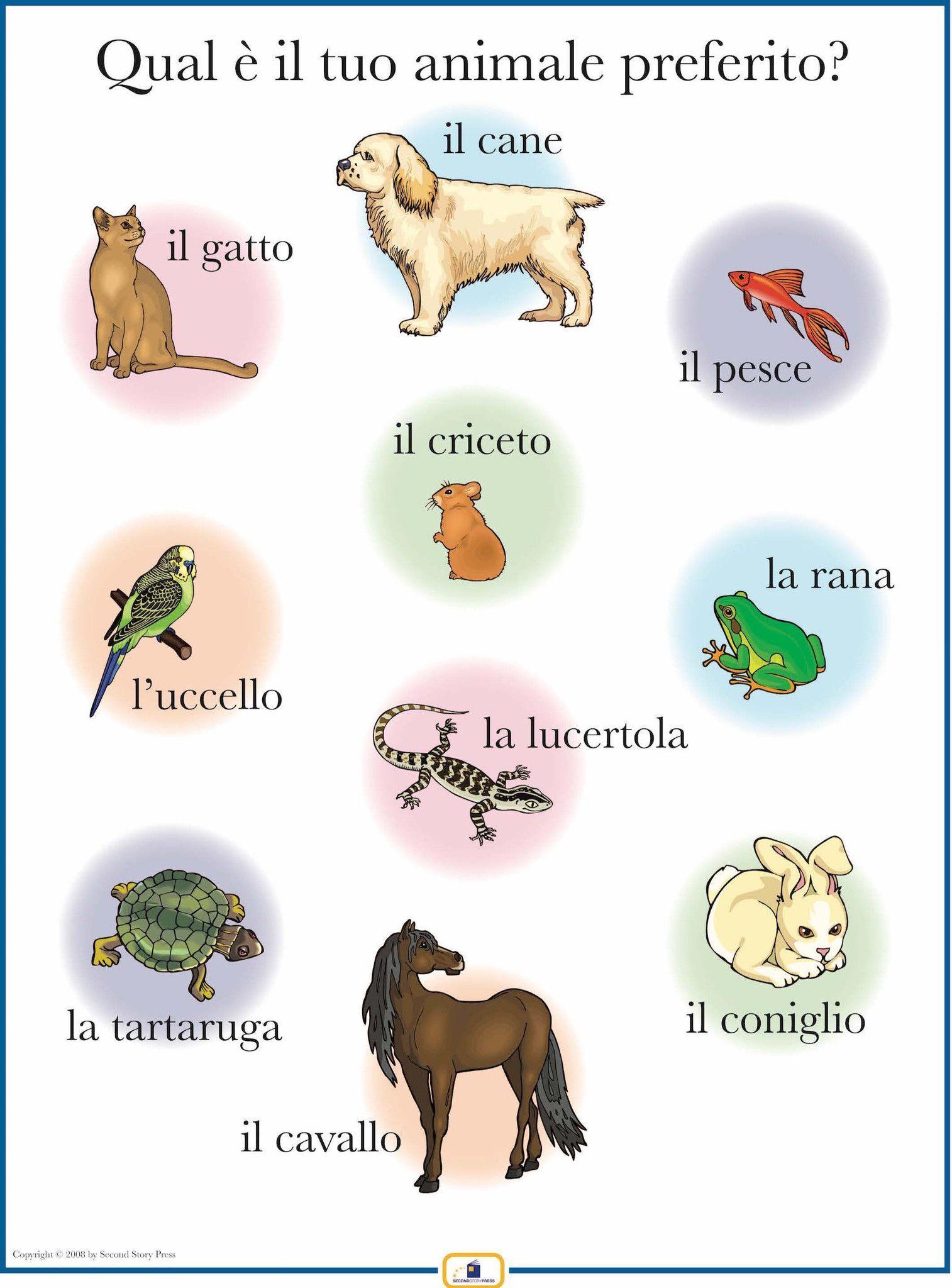 Italian Pets Poster
