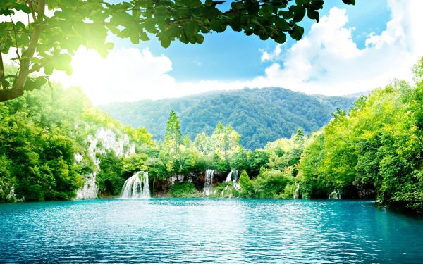 Sakura Trees Beautiful Landscape Wallpaper Hd Amazing Landscapes