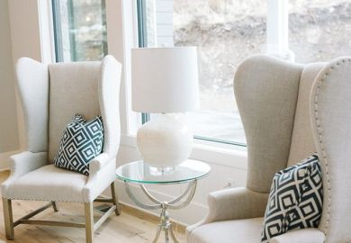 Accent Chairs On Pinterest Armchairs Accent Chairs And