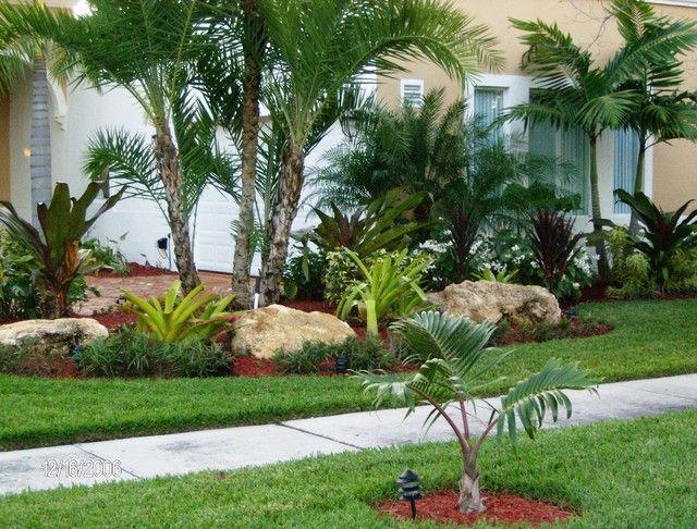 Les 25 Meilleures Idées De La Catégorie Landscaping With Palm