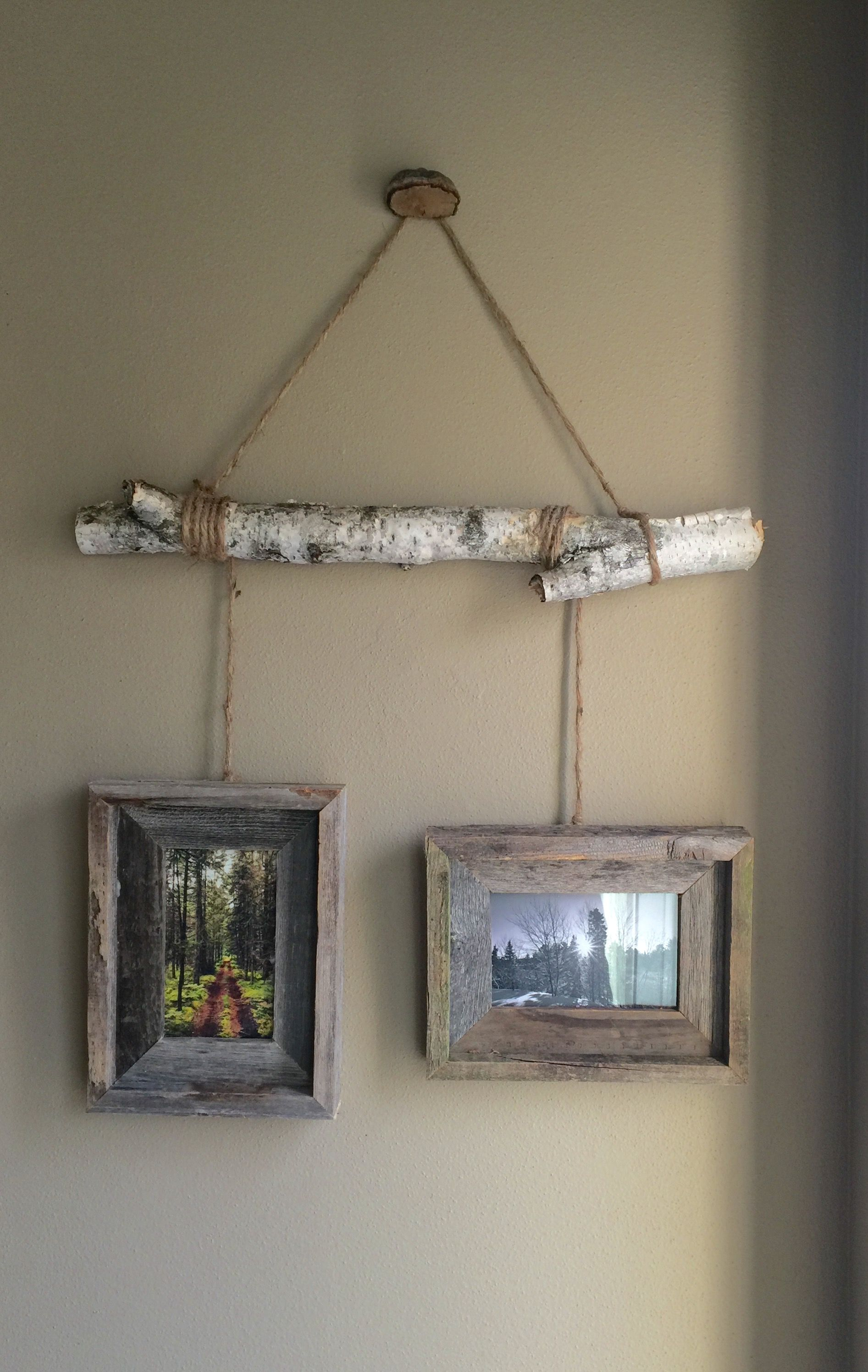 Birch Tree Limb picture hanger by Cynthia De Vor  Birch