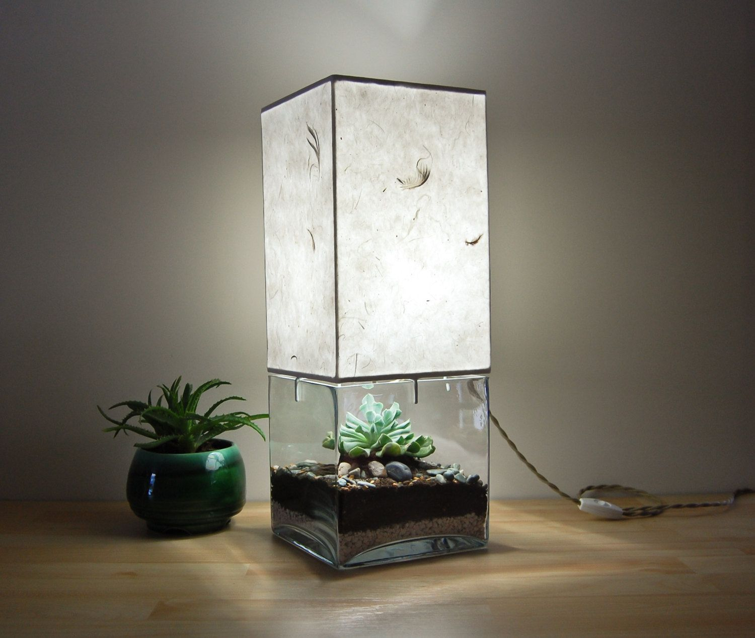 Large Square Column Terrarium/Display Table Lamp, with