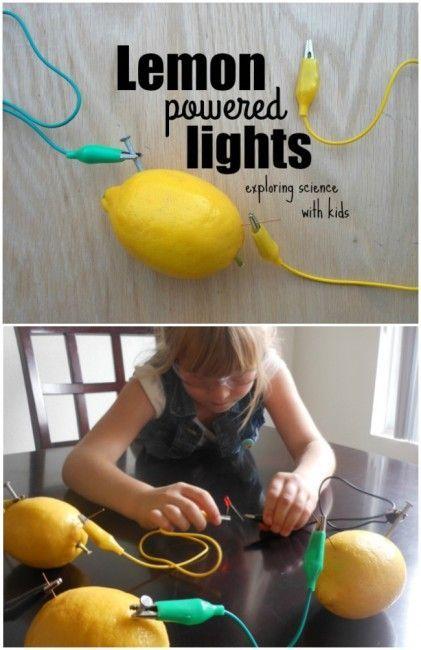 Fruit Light Bulb Science Fair Projects