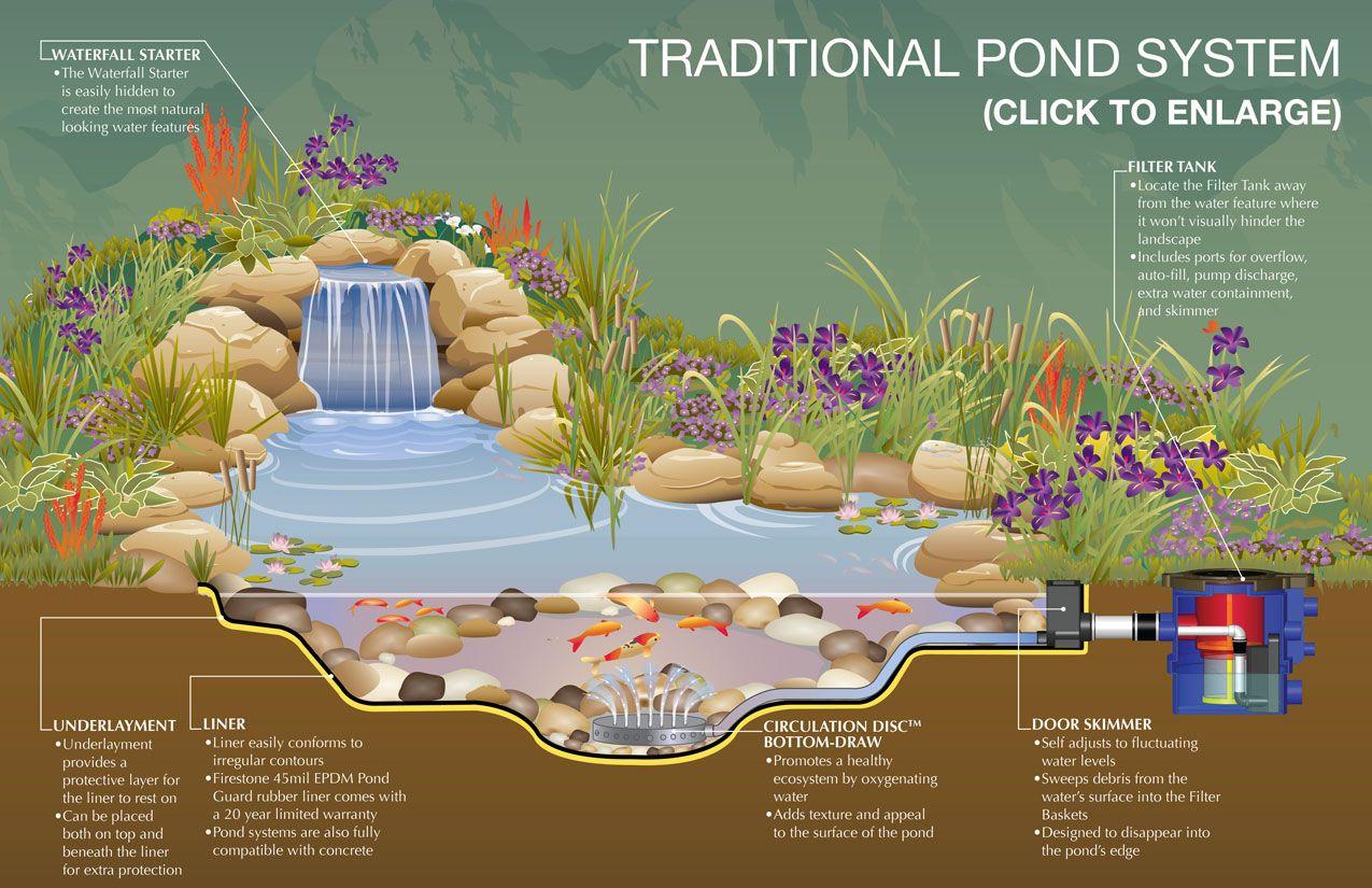 building a koi pond diagram gm cs alternator wiring above ground turtle ponds for backyards kits with