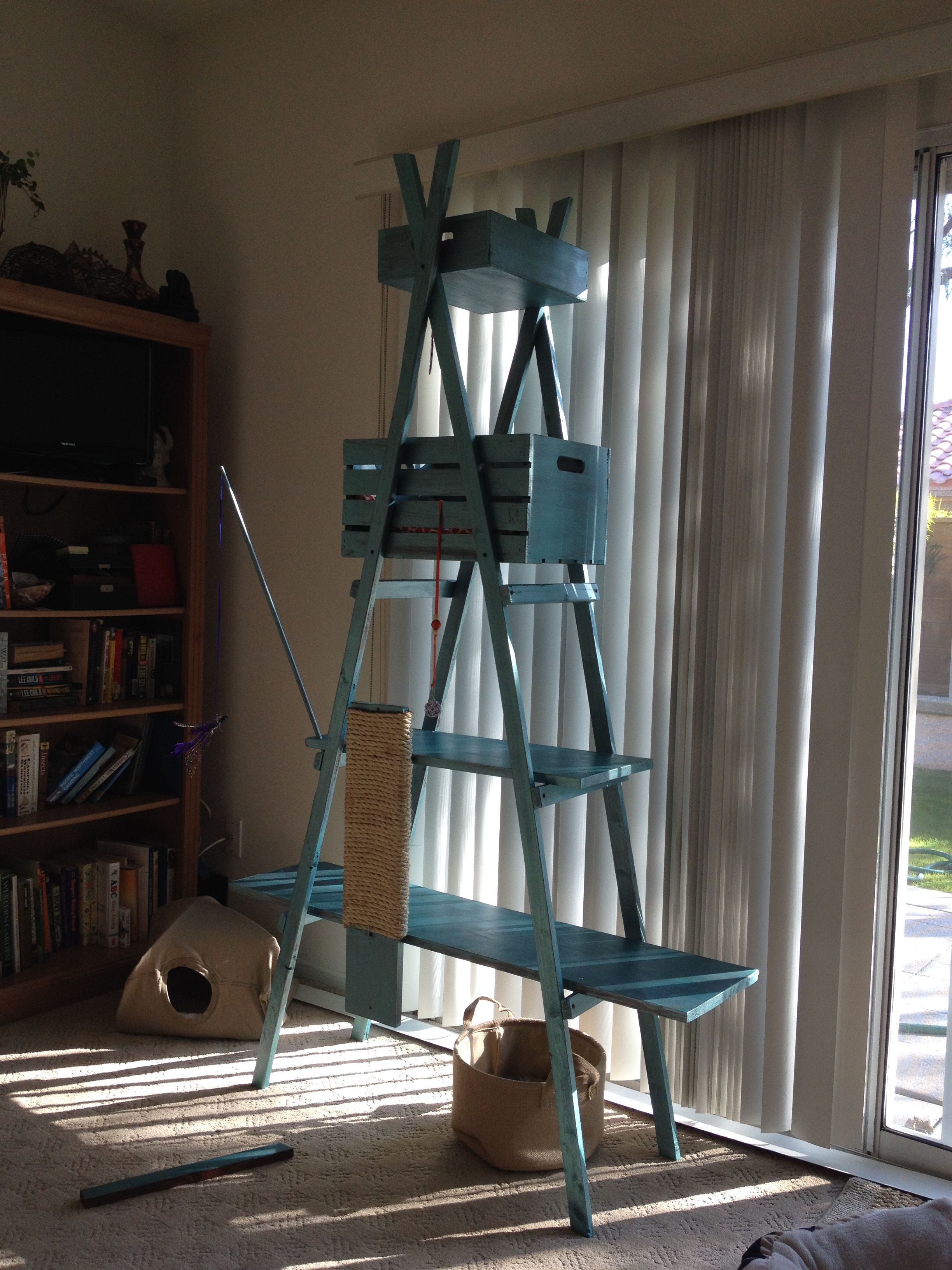 Diy Cat Climber Under 25 Ladder Style Made With