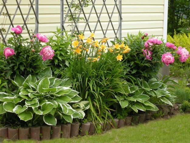 Flower Garden Design on Pinterest  Colorful Roses Year Round Flowers and Small English Garden