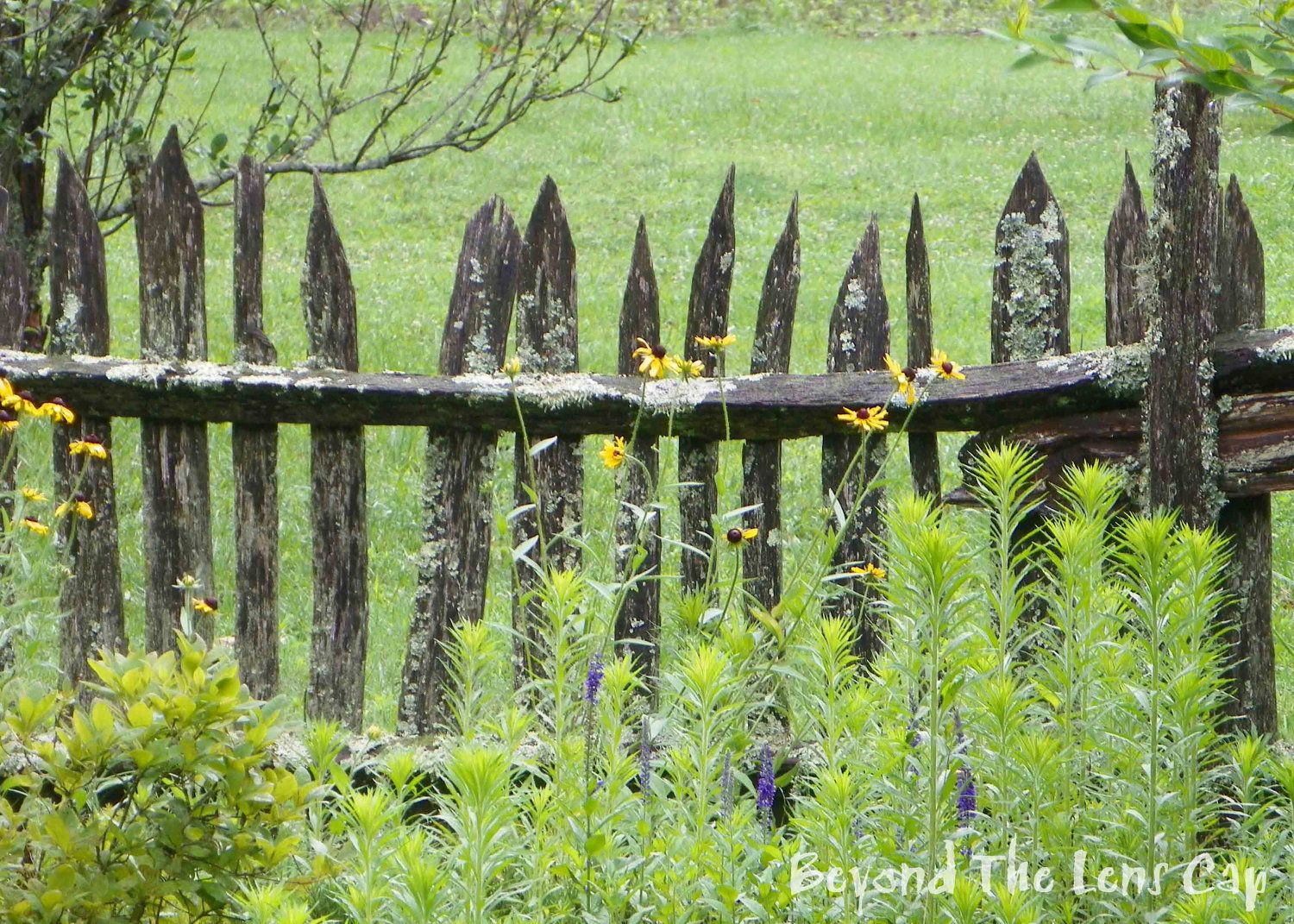 Rustic Wood Fence Designs Rustic Wood Fences Rustic Wooden