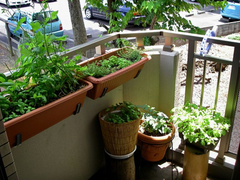 Apartment Garden Ideas small flowers apartment balcony garden ideas Small Apartment Garden Ideas Theapartment